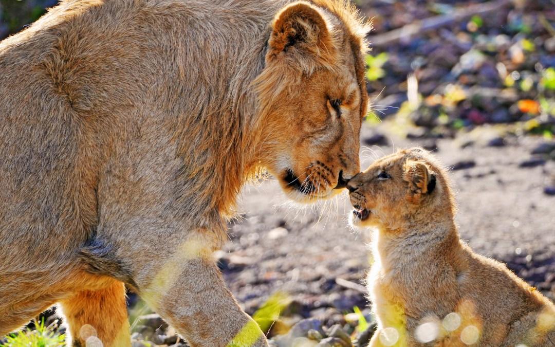 Det guddommelige forældreskab