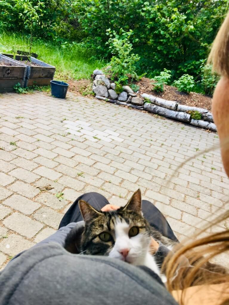 Anja Dalby: Hvad tør du? Anja sidder i en stol i haven med sin kat Jonna i favnen. Anja kigger ud i haven, mens Jonna kigger på fotografen.