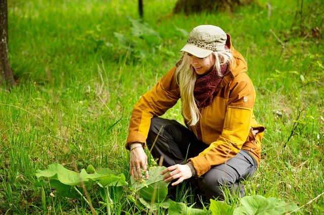 Maria Lisette Jacobsen fra Hyldemors have sidder i naturen og ser på planter og urter.