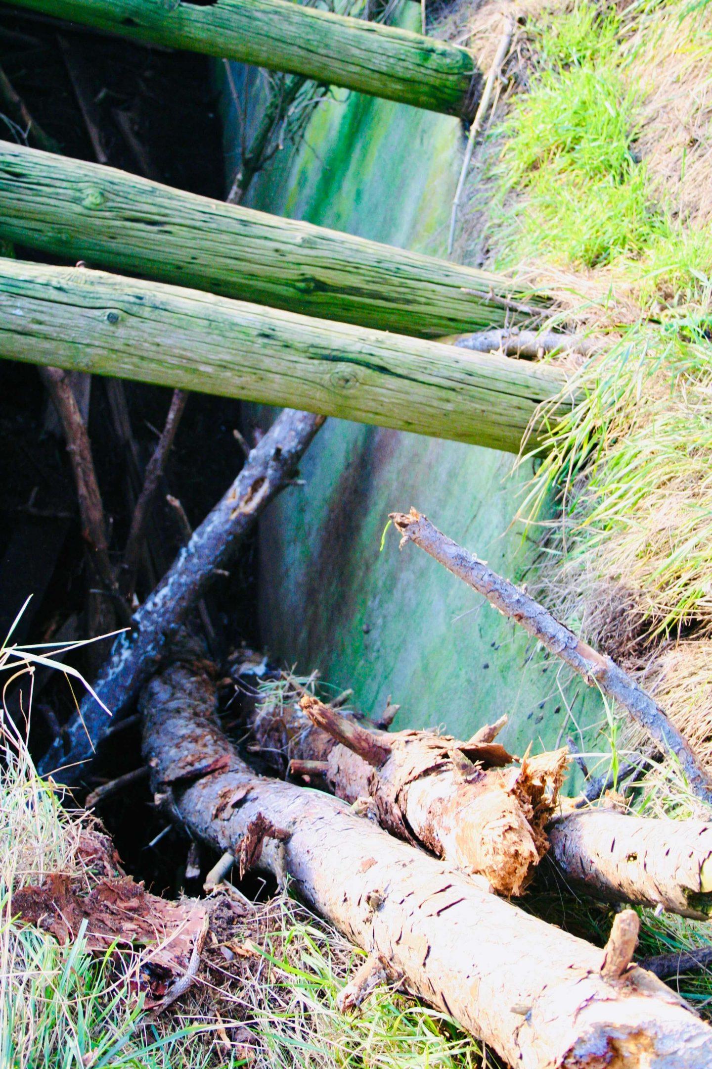 En stige af træstammer vi lavede ned i hullet.