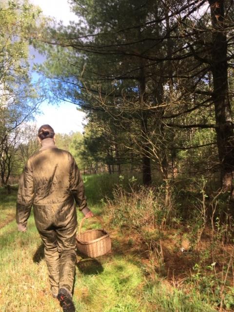 Gå med værdighed. Både i overført betydning, men også helt lavpraktisk i dit liv. Vær venlig og vær kærlig. På billedet er jeg på vej ud i skoven for at samle lidt af naturens gaver ind: Svampe.