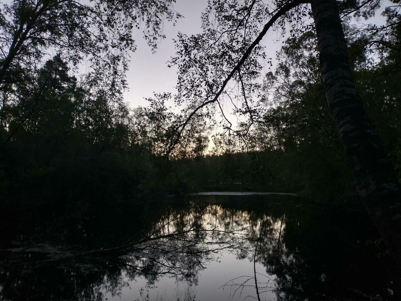 Scener fra en udesidning. Søen om morgenen, mens solen var ved at stå op.